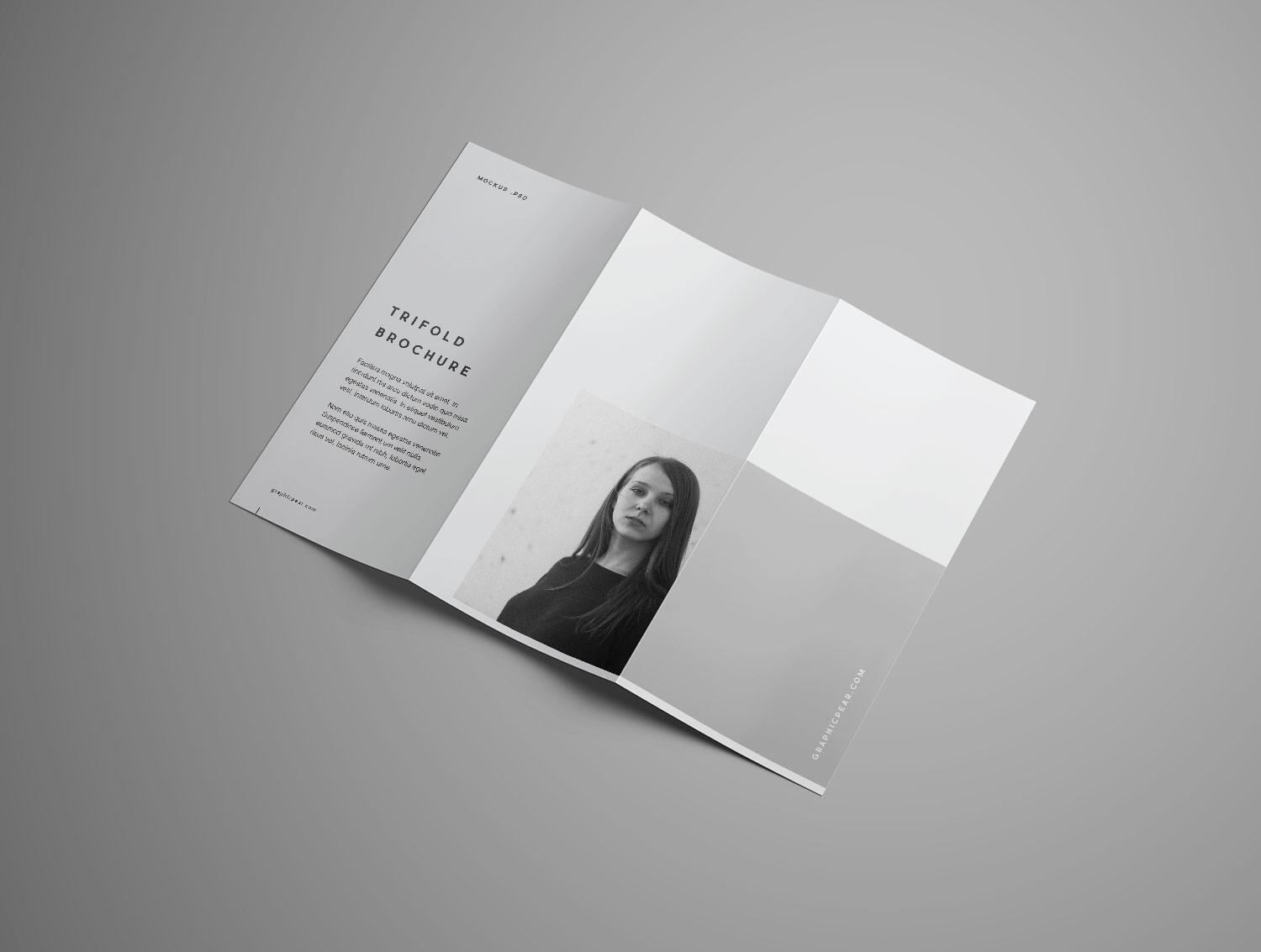 Trifold Brochure Free Mockup