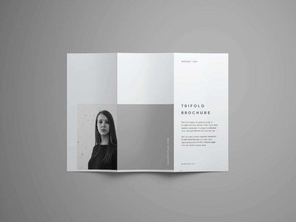 Trifold Brochure Free Mockup