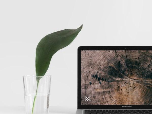 MacBook Mock Up