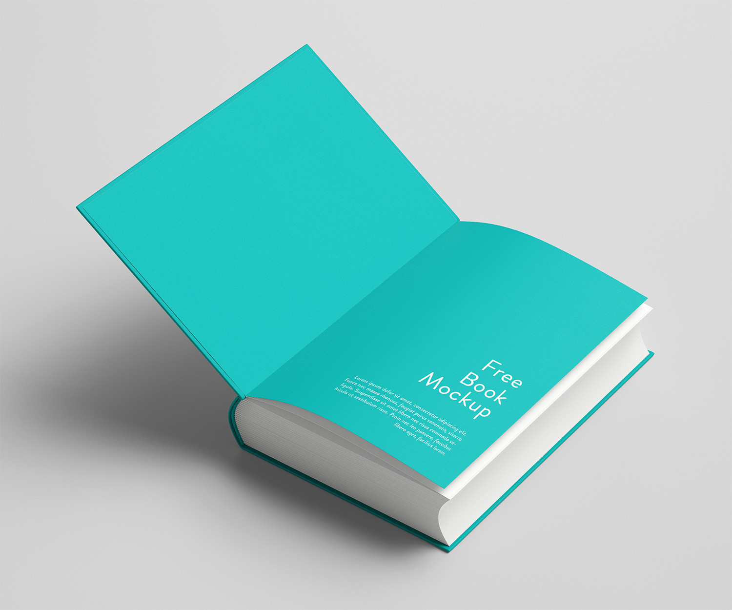 Thick-Book-Mockup-Free-02