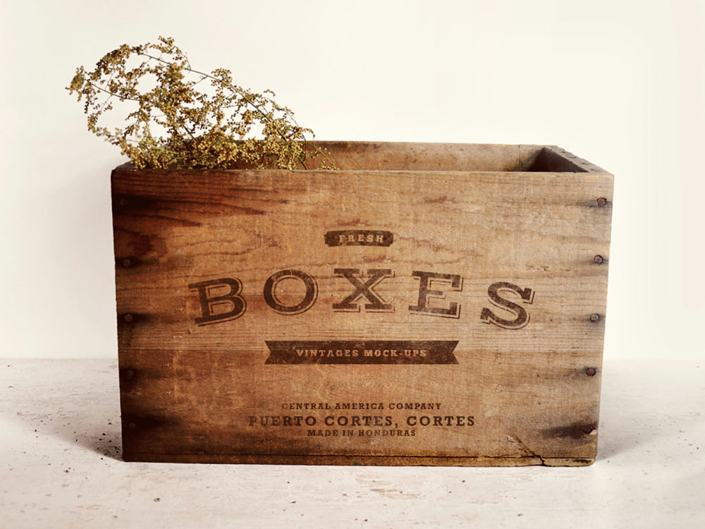 Vintage Boxes Logo Mockup Free