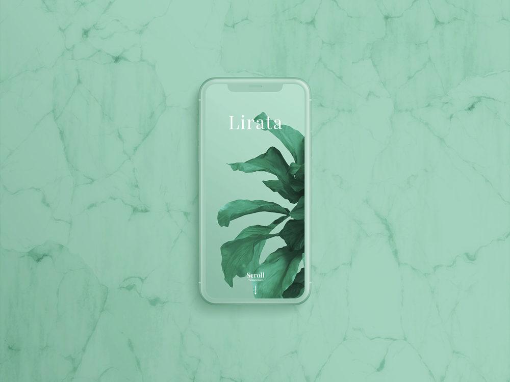 Custom iPhone X on Marble