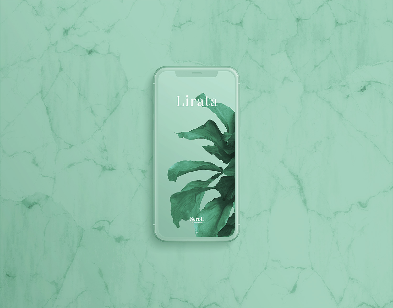 Custom-iPhone-X-on-Marble-01