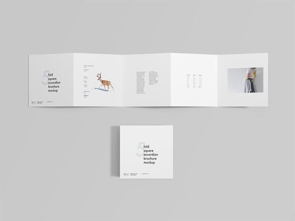 5 Fold Square Accordion Brochure Mockup