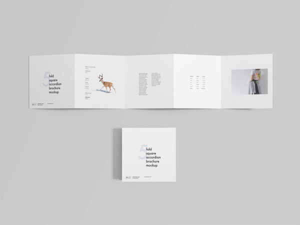 5 Fold Square Accordion Brochure Mockup