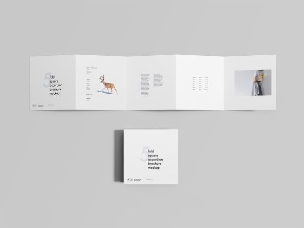 Free Five-Fold Square Accordion Brochure Mockup