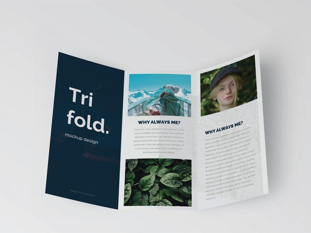 Trifold Brochure Mock-Up Free Download