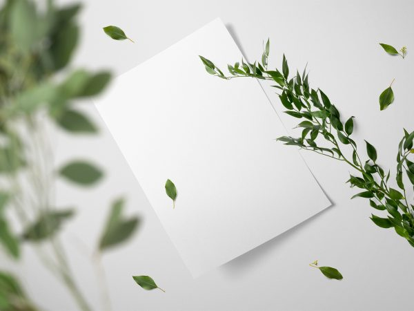Floral Brand Paper Mockup Free