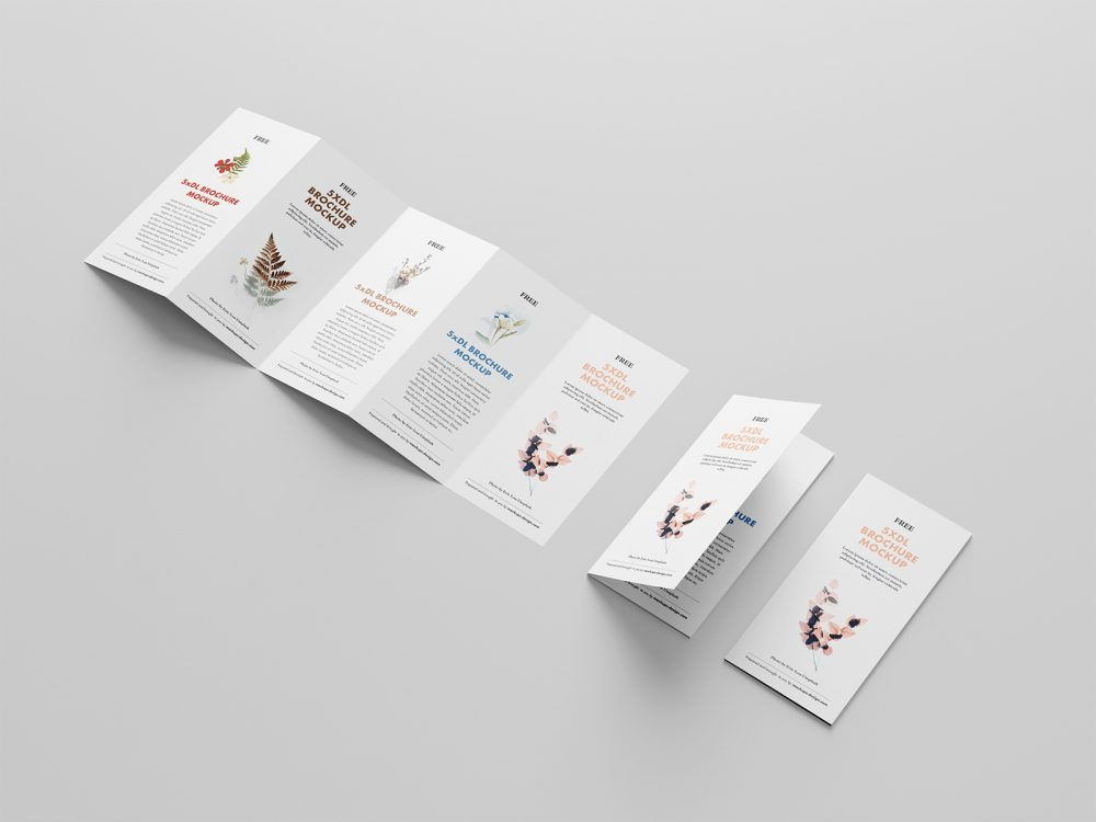 5 Fold Accordion Brochure Mockup