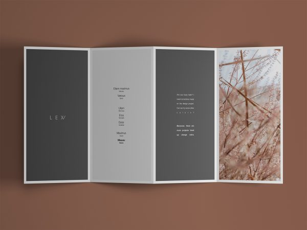 4-Fold Brochure Free Mockup