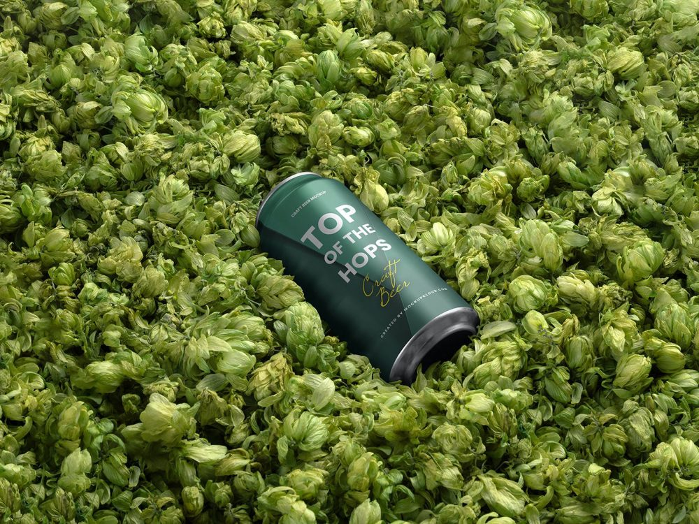 Free Beer Can Mockup Surrounded Hops Flowers