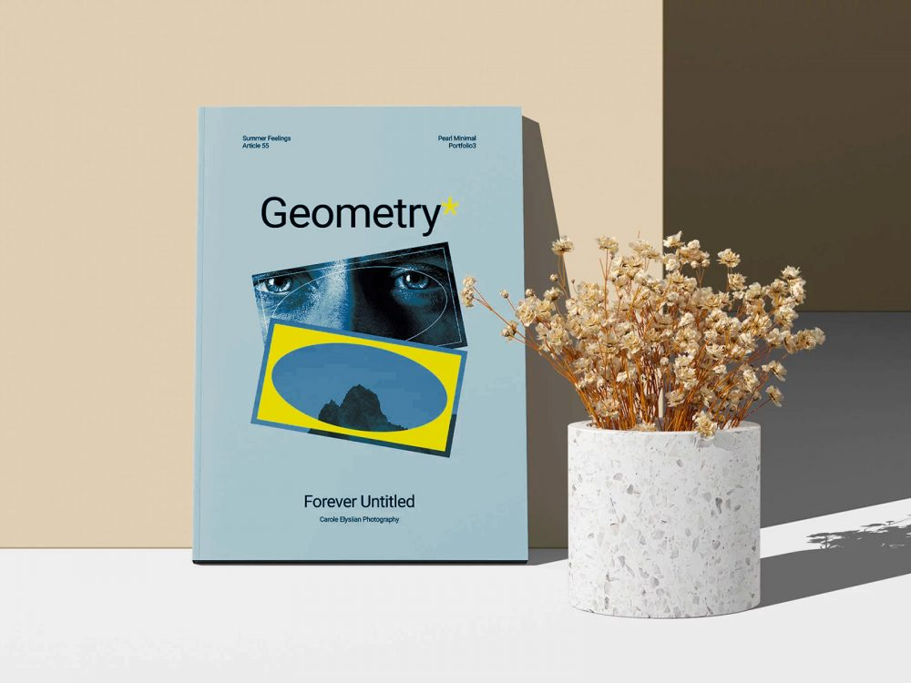Free A4 Magazine Cover Mockup with a Dry Plant